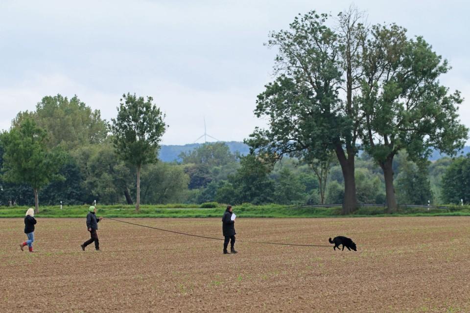 Die Schutzhundausbildung besteht aus drei Abteilungen. Abteilung A ist die Fährtenarbeit. Alle Fotos entstanden auf der Vereinsprüfung des GHSV Katlenburg e. V. am 09.09.2017.