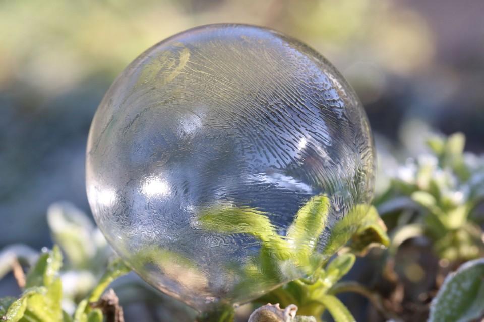 Jetzt ist die Sonne da und die gefrorene Seifenblase taut wieder auf....